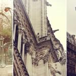 Paryžius- kvapų miestas