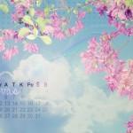 Baltas pavasario laukimas